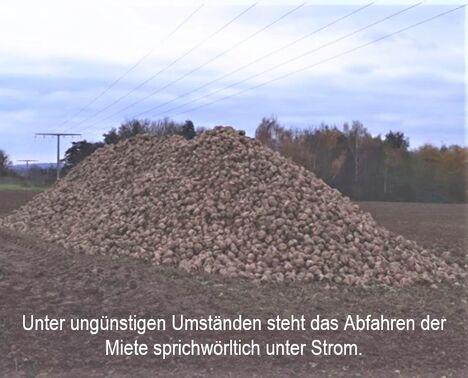 Baumgarten-Strommiete